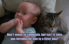 Don't mean to complain, but isn't it time you introduced him to a litter box?