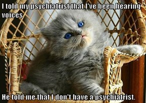 I told my psychiatrist that I've been hearing voices  He told me that I don't have a psychiatrist.