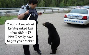 I warned you about Driving naked last time, didn't I?  Now I really have to give you a ticket!