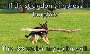 If dis stick don't impress burglars  The .38 under my collar will.