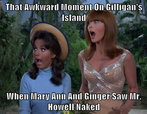 That Awkward Moment On Gilligan's Island  When Mary Ann And Ginger Saw Mr. Howell Naked
