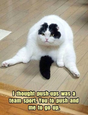I  thought  push-ups  was  a  team  sport.  You  to  push  and  me  to  go  up.