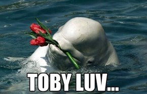Toby luvs all species of females...