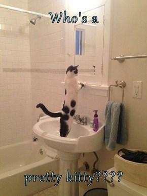 Who's a   pretty kitty????