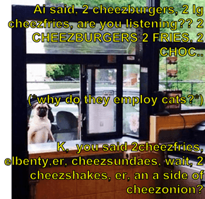 Ai said, 2 cheezburgers, 2 lg cheezfries, are you listening?? 2 CHEEZBURGERS 2 FRIES, 2 CHOC.. (*why do they employ cats?*) K,  you said 2cheezfries, elbenty,er, cheezsundaes, wait, 2 cheezshakes, er, an a side of cheezonion?