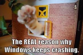 The REAL reason why Windows keeps crashing.