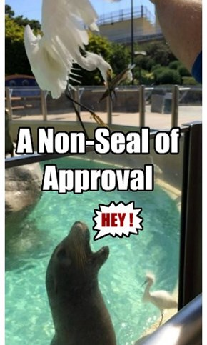 A Non-Seal of Approval