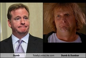 Dumb Totally Looks Like Dumb & Dumber