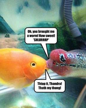 Overly Attached Girlfish