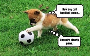 Despite his clever logic, Rover still had a penalty called.