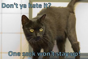 Don't ya hate it?  One sock won't stay up!