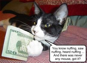 You know nuffing, saw nuffing, heard nuffing ... And there was never any mouse, got it?