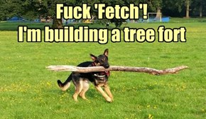 f*ck 'Fetch'! I'm building a tree fort