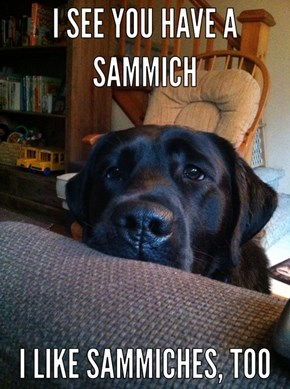 You could SHARE the sammich...