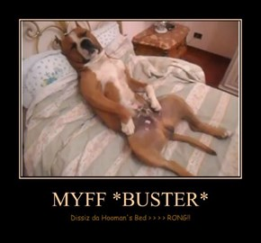 MYFF *BUSTER*