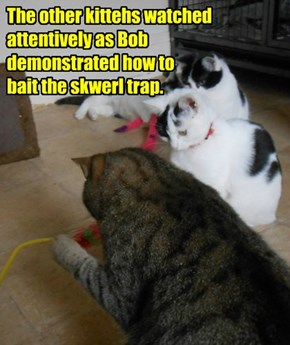 The other kittehs watched attentively as Bob demonstrated how to bait the skwerl trap.
