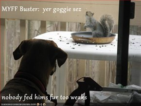 MYFF Buster:  yer goggie sez  nobody fed hims fur too weaks