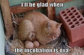 I'll be glad when  the incubation is ova.