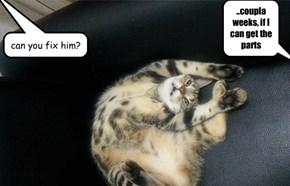 another b. kliban cat lol, part deux