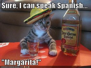 "Sure, I can speak Spanish...  ""Margarita!"""