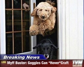Breaking News - Myff Buster: Goggies Can *Hover*Craft