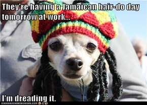 They're having a Jamaican hair-do day tomorrow at work...  I'm dreading it.