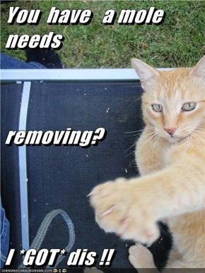 You  have   a mole  needs removing? I *GOT* dis !!