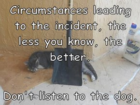 Circumstances leading to the incident, the less you know, the better.   Don't listen to the dog.