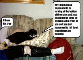 myth: cats are secretly trained assassins out to destroy hoomanity