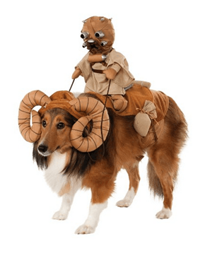 Your Dog Loves Star Wars as Much as You Do, Right?