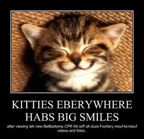 KITTIES EBERYWHERE HABS BIG SMILES