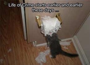 Life of Crime starts earlier and earlier these days ...