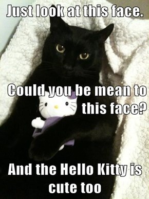 Just look at this face.  Could you be mean to this face? And the Hello Kitty is cute too