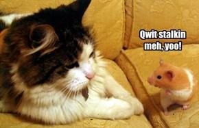 Qwit stalkin  meh, yoo!