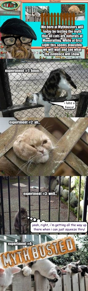 Mythbusters: The Cat as Natural Monorailer