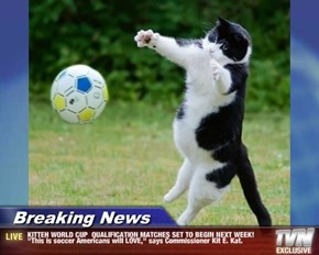 "Breaking News - KITTEH WORLD CUP  QUALIFICATION MATCHES SET TO BEGIN NEXT WEEK! ""This is soccer Americans will LOVE,"" says Commissioner Kit E. Kat."