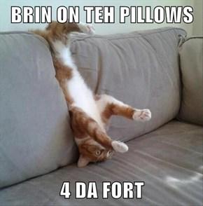 BRIN ON TEH PILLOWS  4 DA FORT