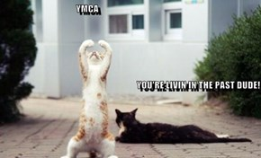 YMCA                                                                                                                                                                   YOU'RE LIVIN IN THE PAST DUDE!