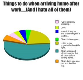 Things to do when arriving home after work.....(And I hate all of them)