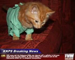 KKPS Breaking News - Wiff news dat teh Unknown Kittie wer injured wiff a splinter in teh paw while tryin' to sabe kitties, Dr Tinycat offers free medical care to teh Unknowed Kittie! An' in complete anonymities.