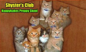 KKPS News - After being nominated by Shyster Millie an' seconded by Shyster Tillie, teh Shyster's Club today unanimously voted to admit teh Unknown Kittie into teh Club wiff full Membership Privileges..