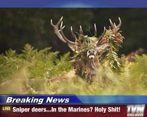 Breaking News - Sniper deers...In the Marines? Holy sh*t!