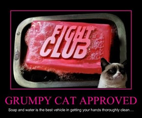 GRUMPY CAT APPROVED
