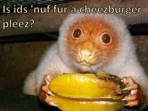 Is ids 'nuf fur a cheezburger pleez?