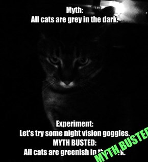 Myth:  All cats are grey in the dark.            Experiment:  Let's try some night vision goggles.  MYTH BUSTED:  All cats are greenish in the dark.