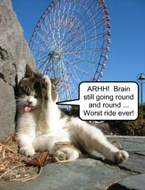 ARHH!  Brain still going round and round ... Worst ride ever!