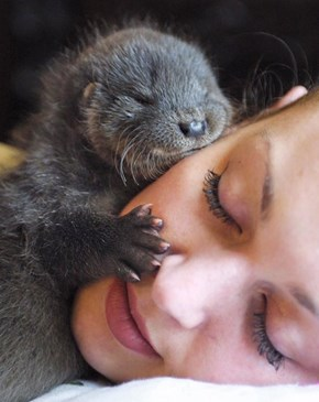 I Am Cuddling Your Face To Give You Good Dreams