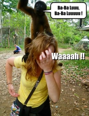 Desi monkeying around