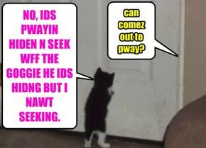NO, IDS PWAYIN HIDEN N SEEK WFF THE GOGGIE HE IDS HIDNG BUT I NAWT SEEKING.