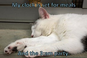 My clock is set for meals  And the 3:am party.